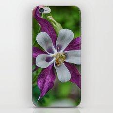 The Garden Star iPhone & iPod Skin