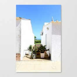 That magical space between these two houses Canvas Print