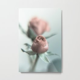 A Pink Rose for your Sweetheart... Metal Print