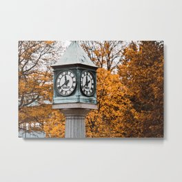 Time for Autumn Colors Metal Print
