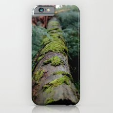 Fallen Log Slim Case iPhone 6s