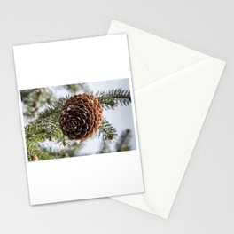 Spring III Stationery Cards
