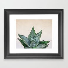 nature VI cactus Framed Art Print