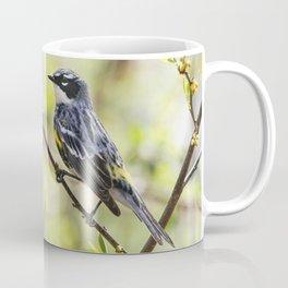 Yellow Rumped Warbler  Coffee Mug