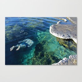 Meadow Hot Springs Canvas Print