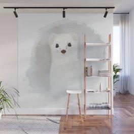 Stoat (Mustela erminea) Wall Mural