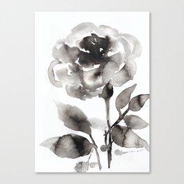 Black Peony Canvas Print