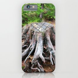 Enchanted Tree Trunk with Roots iPhone Case