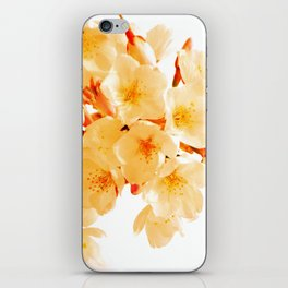 WARM BLOSSOMS iPhone Skin