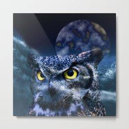 Owl and Night Sky Metal Print
