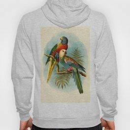 Vintage Parrots Hoody
