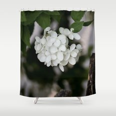 Hydrangea and Old Country Fence Shower Curtain