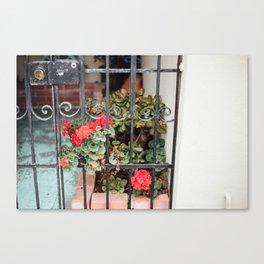 front porch flowers Canvas Print