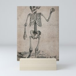 Skeleton of a child standing in a landscape. Engraving, 17--. Mini Art Print