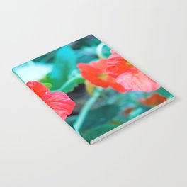 Bee eating nectar from red poppy flower in spring Notebook