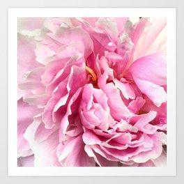 Pink Layers Art Print