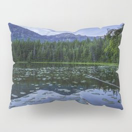 USA Johns Lake Glacier HDR Nature mountain park forest Scenery HDRI Mountains Parks Forests landscape photography Pillow Sham