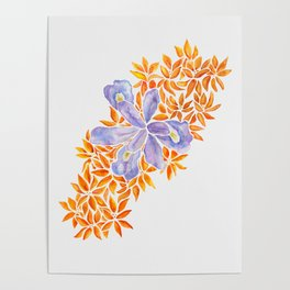 Iris and Butterfly Weeds Poster