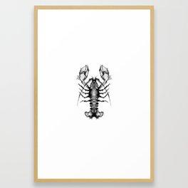 Lobster and Shrimps Framed Art Print