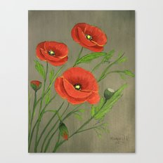 Poppies-3 Canvas Print