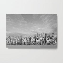 Spruce After Snow Storm Metal Print