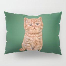 Funny kitten Pillow Sham