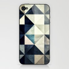 GLYZBRYKS iPhone & iPod Skin