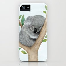 Sleeping Koala Bear iPhone (5, 5s) Slim Case