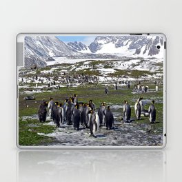 King Penguins, Snow and Glaciers Laptop & iPad Skin