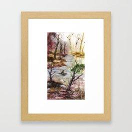 Gaze and Adapt Framed Art Print