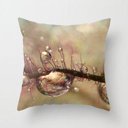 Smokey Drops Throw Pillow
