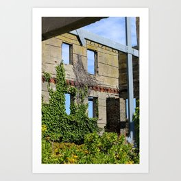 Alcatraz Building Reclaimed by Nature 3 Art Print
