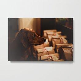 Dog by Ethan Sexton Metal Print