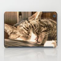 tigers iPad Cases featuring Sleeping Tigers by Shalisa Photography