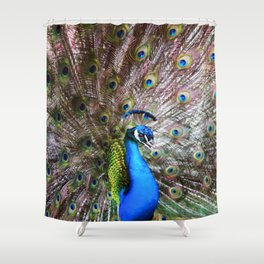 Dunedin Cemetery Peacock Shower Curtain