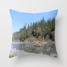 Sunshine on a Spring Day..... Throw Pillow