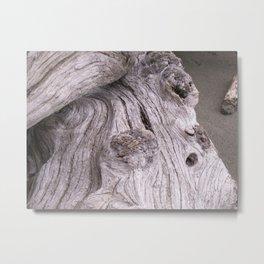 zen driftwood 2 Metal Print