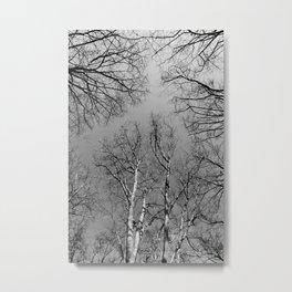 Branching Out Metal Print