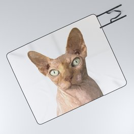 Sphynx cat portrait Picnic Blanket