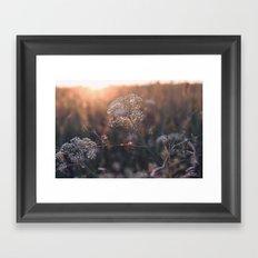 last summer dream  Framed Art Print