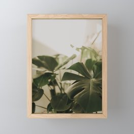 Botanica No 1 Framed Mini Art Print