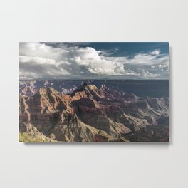 Nature Unleashed Metal Print