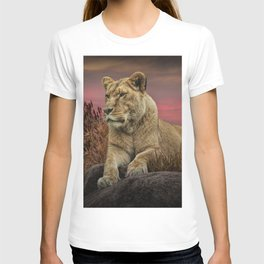 African Female Lion in the Grass at Sunset T-shirt