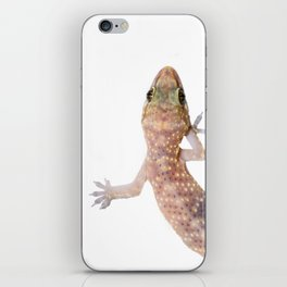 Gecko  iPhone Skin