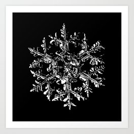 Snowflake vector - Gardeners dream black Art Print
