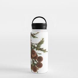 (Spruce or Fir) Cones Water Bottle