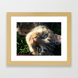 Cloud watching Framed Art Print