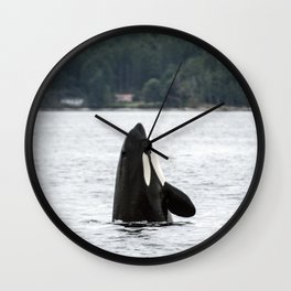 Whale  Wall Clock