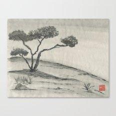 Lone Juniper Canvas Print