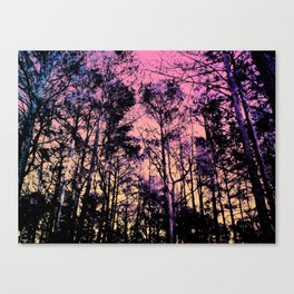 Forest (Sunrise) Canvas Print